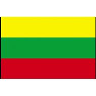 Polisterinė Lietuvos vėliava