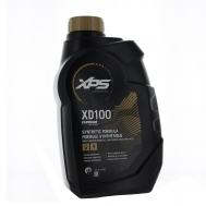 Alyva XPS MARINE XD100 Evinrude E-TEC 2T varikliams